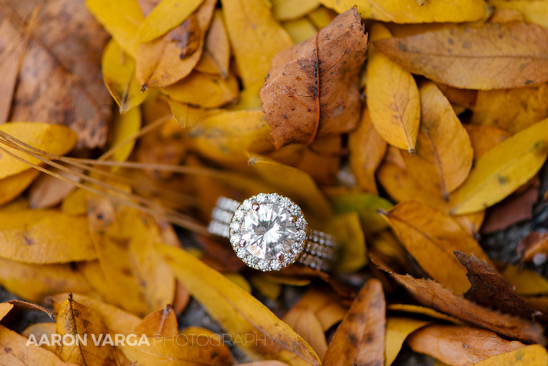 03 huge triple band engagement ring - Gina + Chris | Oglebay Resort Wedding Photos