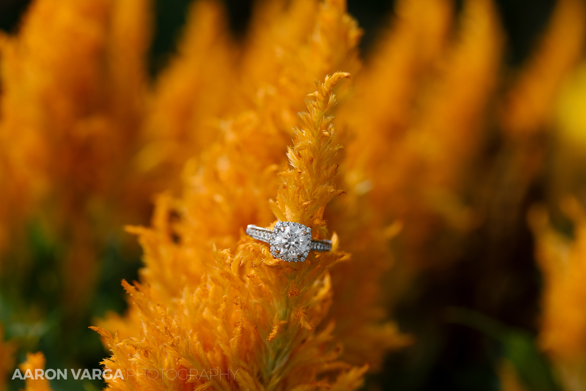 03 montour heights country club engagement ring - Amy + Bill | Montour Heights Country Club Wedding Photos