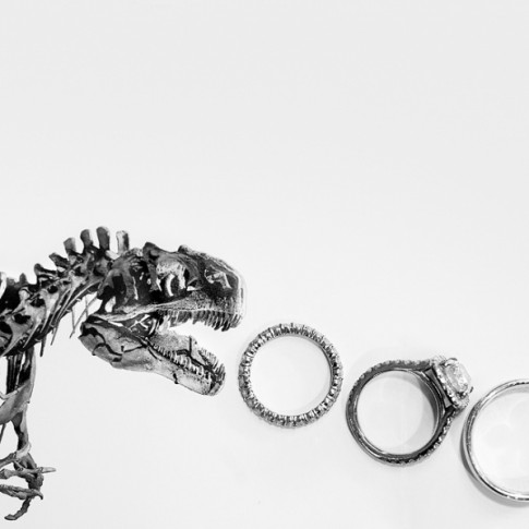 dinosaur-wedding-photo(pp_w900_h598)