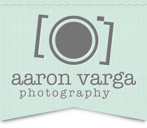 Pittsburgh Wedding Photographers | Aaron Varga Photography logo